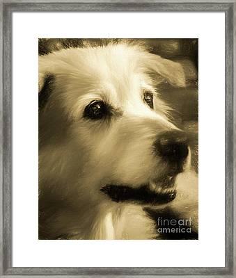 Max Framed Print by Elijah Knight