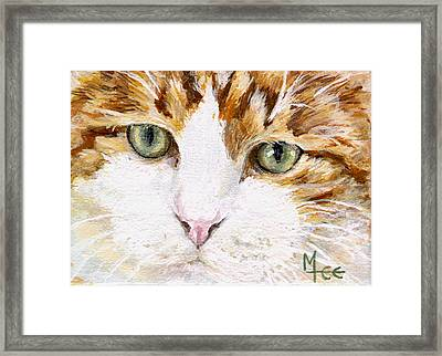 Max Framed Print by Mary-Lee Sanders