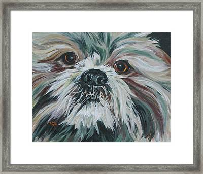 Max Up Close And Personal Framed Print