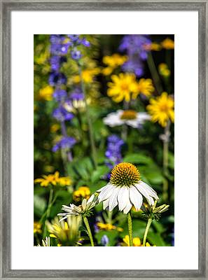 Framed Print featuring the photograph May Flowers by Steven Sparks
