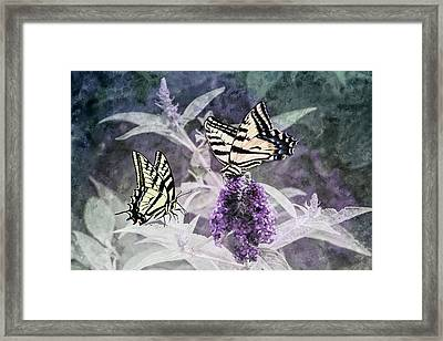 Framed Print featuring the photograph May I Join You by Diane Schuster