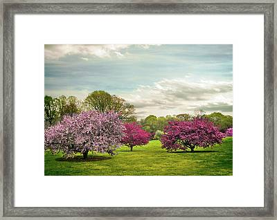 Framed Print featuring the photograph May Meadow by Jessica Jenney