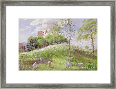 May Mount Framed Print by Timothy Easton