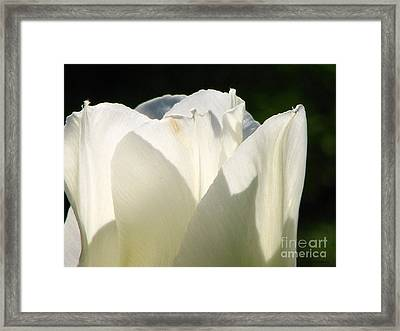 May Queen Framed Print by Roxy Riou