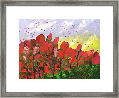 May Roses Framed Print