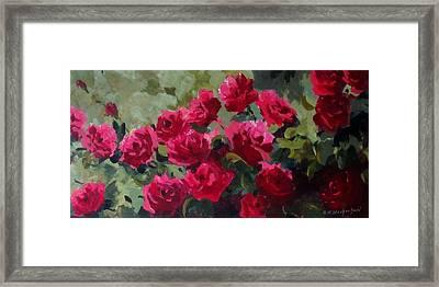 May Roses Framed Print by Sandra Strohschein