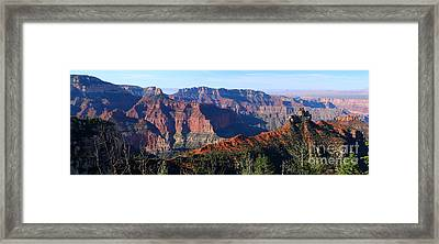 May Your Beauty Last Forever Framed Print