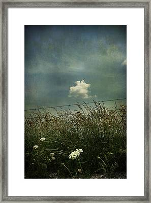 Maybe Someday I'll Float Above Framed Print by Laurie Search