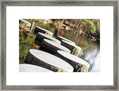 Maymont Stepping Stones Framed Print