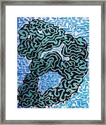 Maze Framed Print by Amanda Schambon