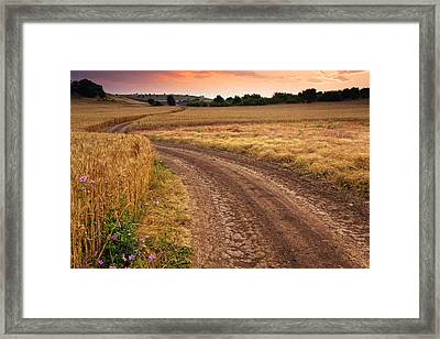 Mazzy Road Framed Print