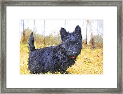 MBF Framed Print by Image Takers Photography LLC - Laura Morgan
