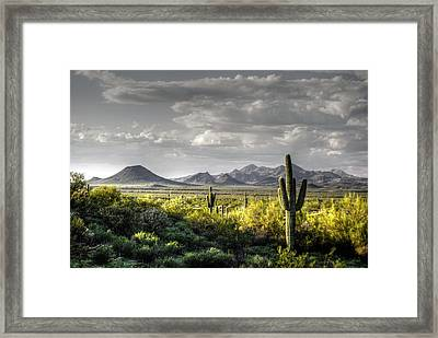 Mc Dowell Mountains - Hdr Framed Print by Tam Ryan