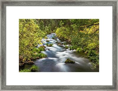 Mcarthur-burney Falls Creek Framed Print