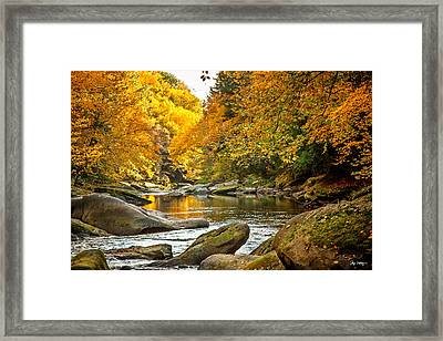 Mcconnell's Mill State Park Framed Print by Skip Tribby