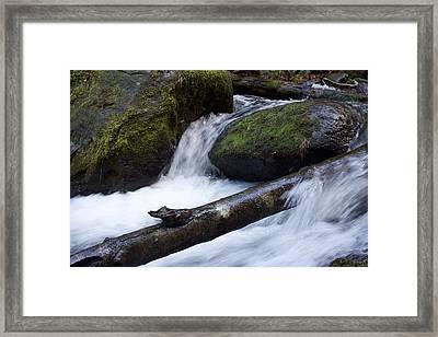 Mccord Log Motion Framed Print