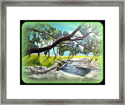 Mccoy Creek B Framed Print