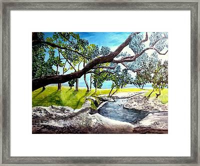 Mccoy Creek Framed Print