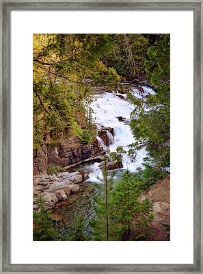 Mcdonald Creek 4 Framed Print by Marty Koch