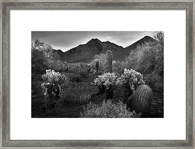 Framed Print featuring the photograph Mcdowell Mountains Black And White by Dave Dilli
