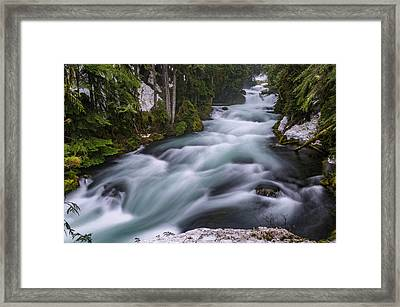 Framed Print featuring the photograph Mckenzie River by Cat Connor