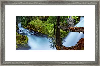 Framed Print featuring the photograph Mckenzie River From Sahalie Falls by Cat Connor