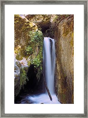 Mcway Creek Falls 2 Framed Print
