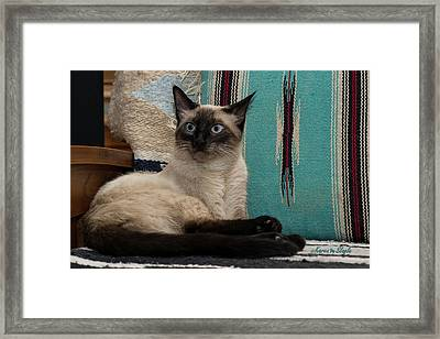 Me And My Chair Framed Print by Karen Slagle