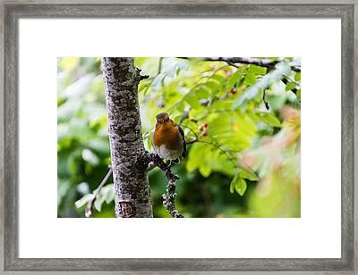Me Framed Print