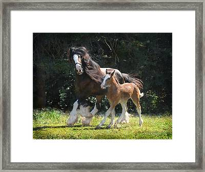 Meadow And Orion Framed Print