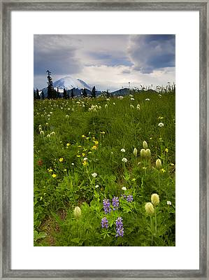 Meadow Beneath The Storm Framed Print by Mike  Dawson