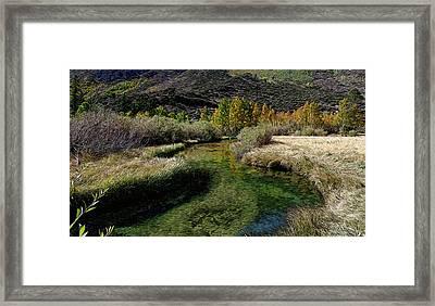 Meadow Creek Framed Print