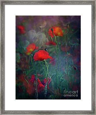 Meadow In Another Dimension Framed Print
