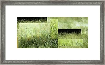 Meadow -  Framed Print