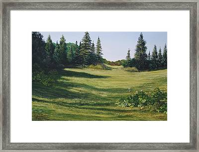 Meadow Walk Framed Print