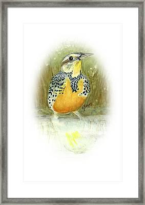 Meadowlark In Field Framed Print by Elise Boam