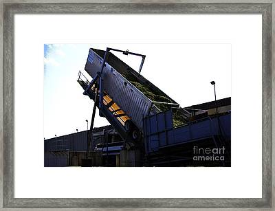 Mean Green Bean Machine Framed Print