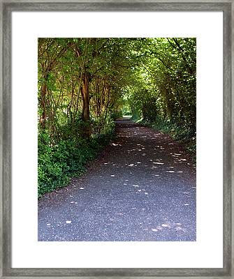 Meandering Way Framed Print by Michael  Cryer