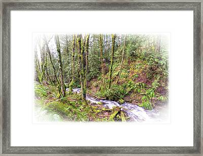 Meditation In The Woods Framed Print by Spencer McDonald