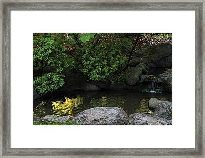 Meditation Pond Framed Print