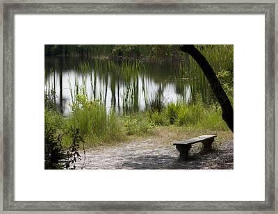 Meditation Spot By A Pond Framed Print by Tina B Hamilton