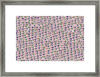 Meditative Puzzle Hypnosis  Framed Print
