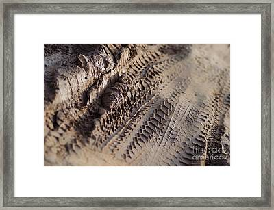 Framed Print featuring the photograph Medium Cu Motorcycle And Car Tracks In Mud by Jason Rosette