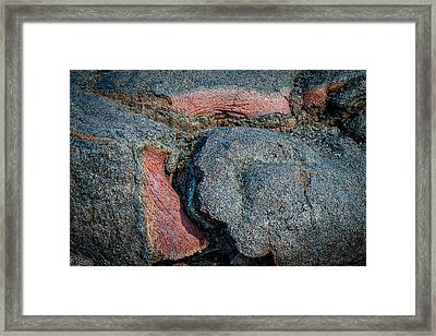Medium Rare Framed Print by Kathleen Scanlan