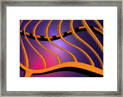 Medusa Framed Print by Paul Wear