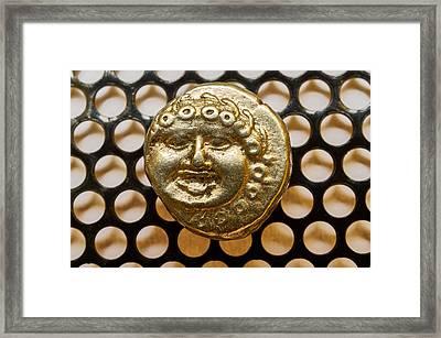 Medusa Framed Print