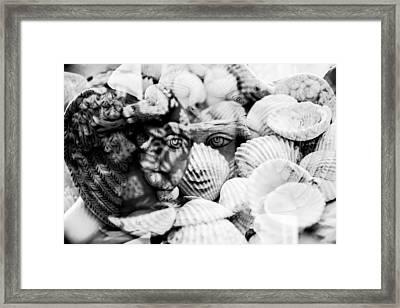 Meduza Framed Print
