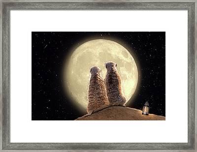 Meerkat Moon Framed Print