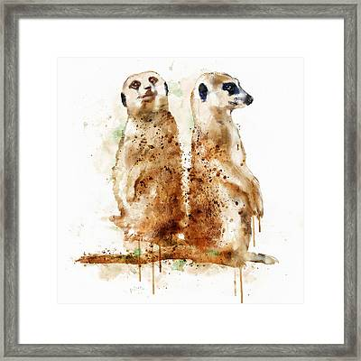 Meerkats Framed Print by Marian Voicu