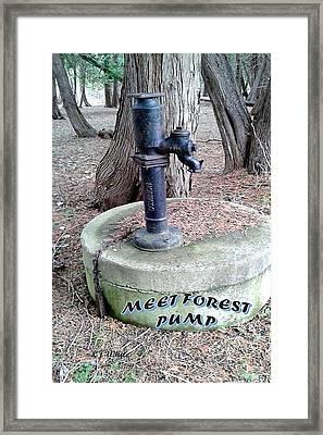 Meet Forest Pump Framed Print